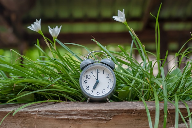 Alarm clock on wooden and white flower plant