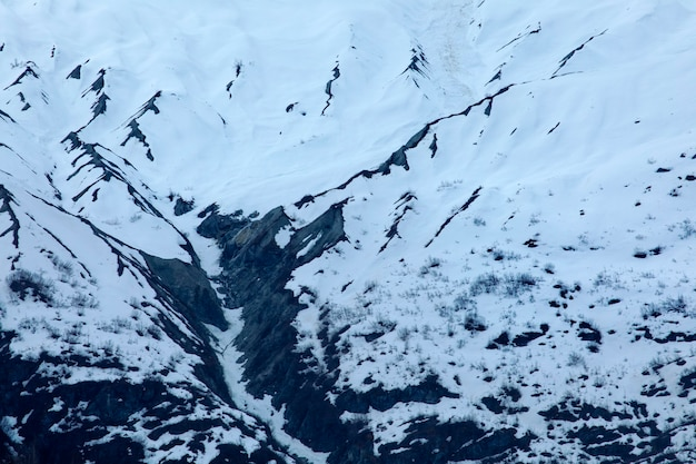 Alaska united states glacier bay national park majestic ice peak