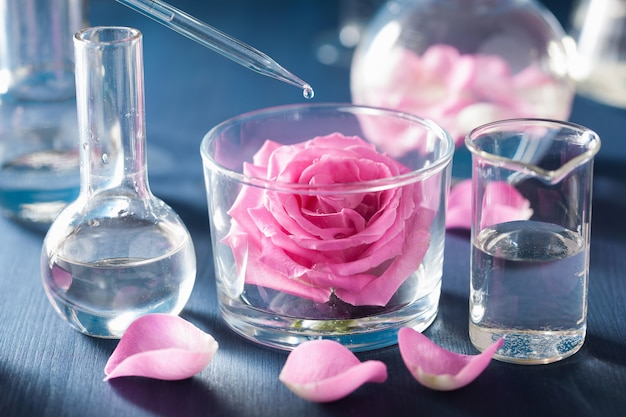 バラの花と化学フラスコによる錬金術とアロマセラピー