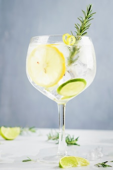 Alcohol drink, gin tonic cocktail, with lemon, lime, rosemary and ice.