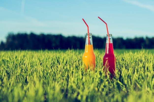 Alcoholic party coctails red and orange fresh beverage in bottles standing in summer grass with straw
