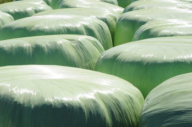 Alfalfa rolls on the countryside