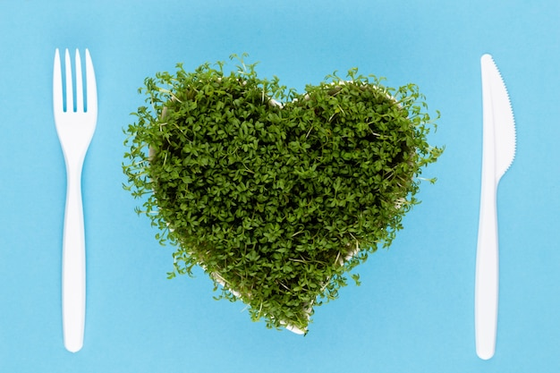 Alfalfa seed sprouts, healthy diet superfood and clean eating concept, heart shaped seed sprouts top view.