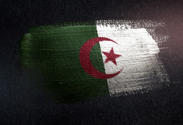 Algeria flag made of metallic brush paint on grunge dark wall