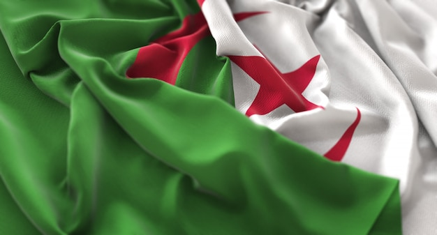 Algeria flag ruffled beautifully waving macro close-up shot