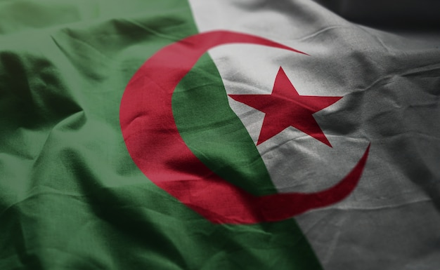 Algeria flag rumpled close up