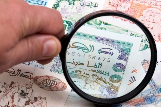 Algerian dinar in a magnifying glass