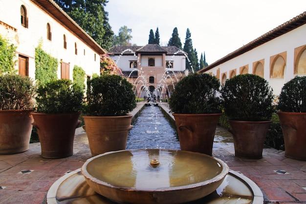 Alhambra's garden