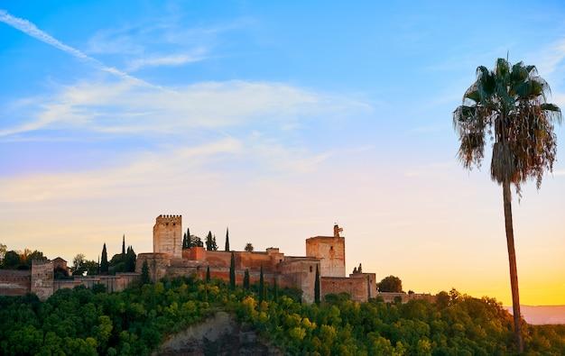Alhambra sunset with palm tree granada