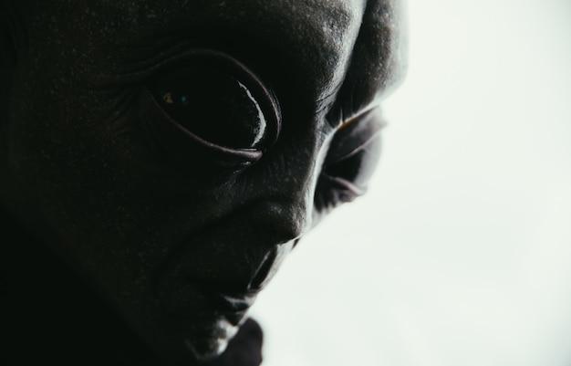 エイリアンの生き物には人間へのメッセージがあります。他の惑星の肖像シリーズのグレーのようなヒューマノイド。