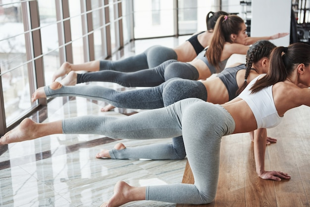All have perfect body types. group of sportive girls in a spacious gym with big windows have training