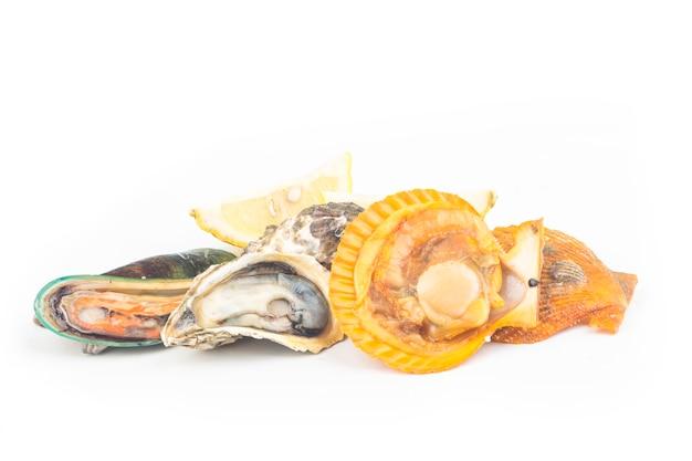 あらゆる種類の貝類:ホタテ、カキ、ムール貝、