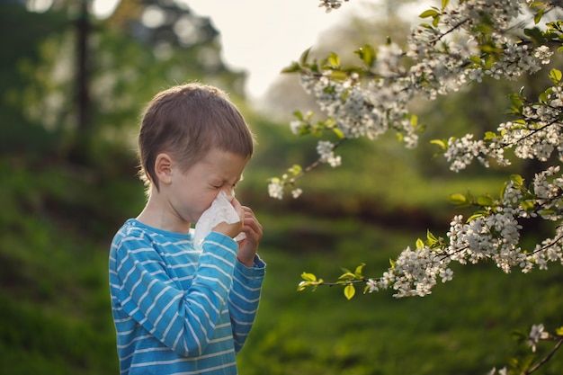Allergy concept. little boy is blowing his nose near blossoming flowers
