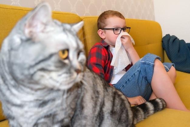 子供の動物の毛に対するアレルギー。少年は猫の毛皮にくしゃみをします。子供の鼻水