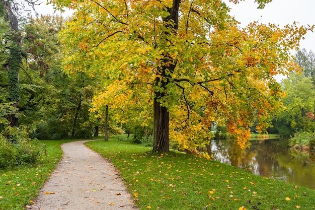 경로와 잔디, 풍경에 낙엽과 오래 된 공원에서 골목