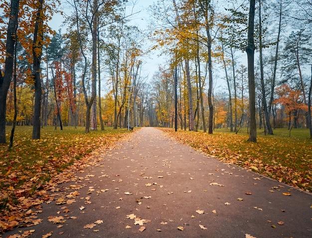 Аллея в осеннем парке с разноцветными деревьями.