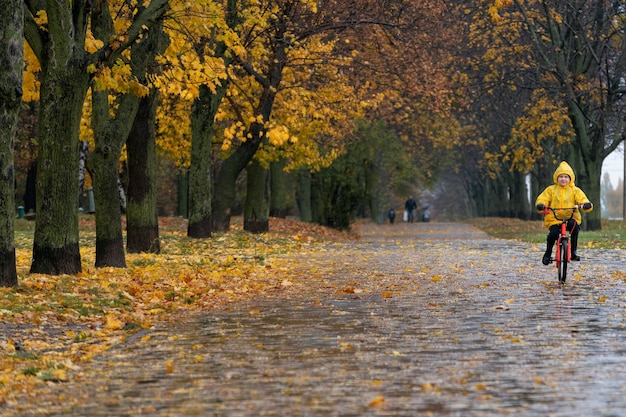 Аллея осеннего парка с опавшими листьями и велосипедистом вдали. мальчик в желтом плаще едет на велосипеде под дождем.
