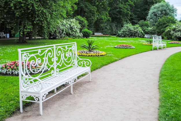 Alley of tsarskoye selo in st. petersburg