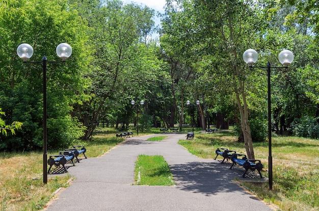 여름 공원에 빈 벤치가 있는 골목