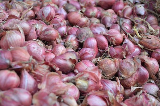 Allium cepa var ascalonicum or red onions in the market place of thailand.
