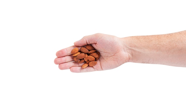 Almond nuts in the hand isolated on a white background. high quality photo