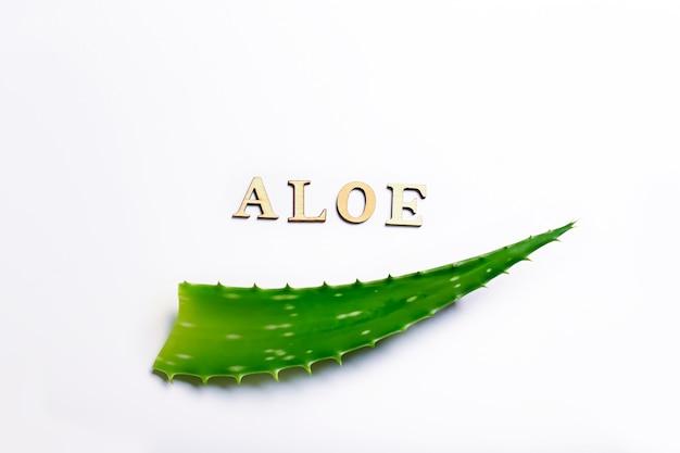 밝은 배경 천연 화장품 및 트리트먼트에 알로에 잎