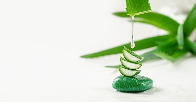 Aloe vera essence gel dripping from the leaf on white background. skin care concept, copy space