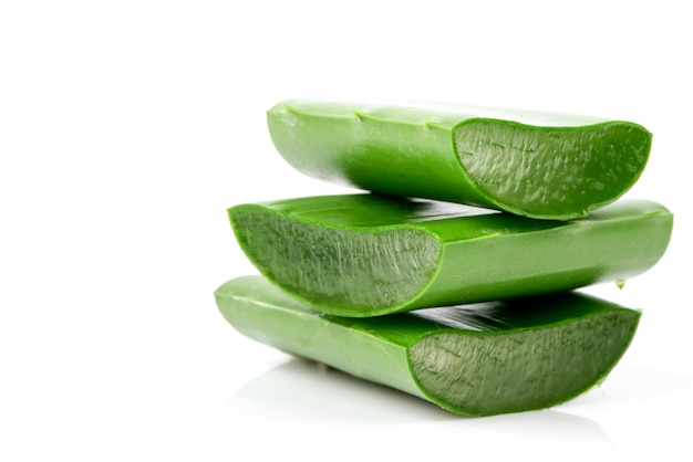 Aloe vera green leaves isolated on white background.