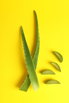 Aloe vera leaves and slices on yellow background