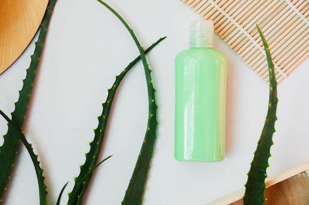 Aloe vera leaves with a beauty cream bottle