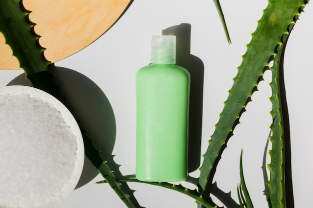 Aloe vera leaves with a beauty cream bottle