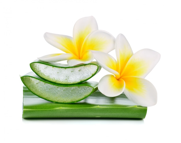 Aloe vera and plumeria isolated on white