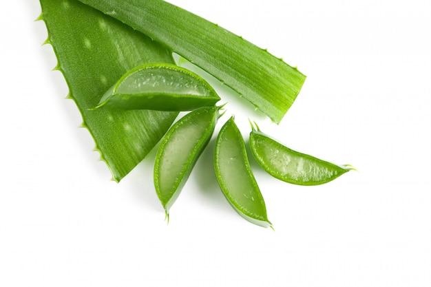Aloe vera slices isolated on white . herbal medicine