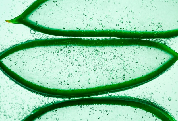 Aloe vera textured slices with sparking water or gel on white background