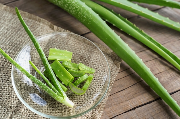 Aloe vera very useful herbal medicine for skin treatment and use in spa for skin care. herb in nature