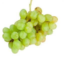 Aloft grapes