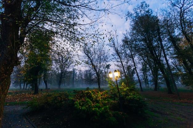 ドラマチックな霧の秋の公園で一人のランタン
