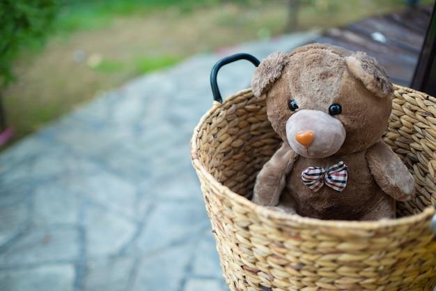 Alone sweet bear in the basket