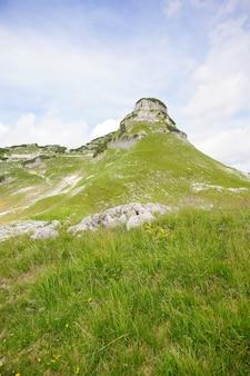 オーストリア、ausseerlandの草で覆われたアルプスの山々