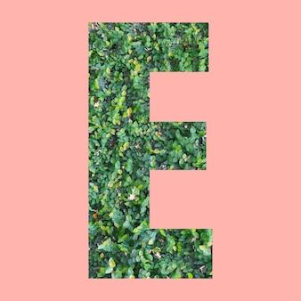 あなたの仕事のデザインのためのパステルピンクの背景に緑の葉のスタイルの形eのアルファベット文字。