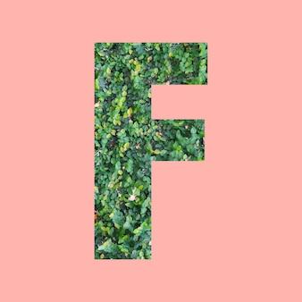 あなたの仕事のデザインのためのパステルピンクの背景に緑の葉のスタイルの形fのアルファベット文字。