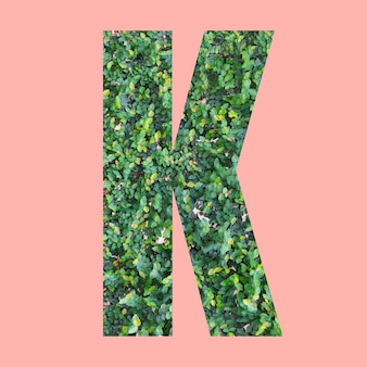あなたの仕事のデザインのためのパステルピンクの背景に緑の葉のスタイルの形kのアルファベット文字。