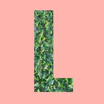 あなたの仕事のデザインのためのパステルピンクの背景に緑の葉のスタイルの形lのアルファベット文字。