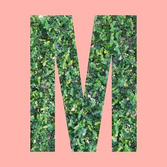 あなたの仕事のデザインのためのパステルピンクの背景に緑の葉のスタイルの形mのアルファベット文字。