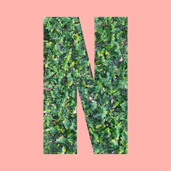 あなたの仕事のデザインのためのパステルピンクの背景に緑の葉のスタイルの形nのアルファベット文字。