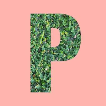 あなたの仕事のデザインのためのパステルピンクの背景に緑の葉のスタイルの形pのアルファベット文字。