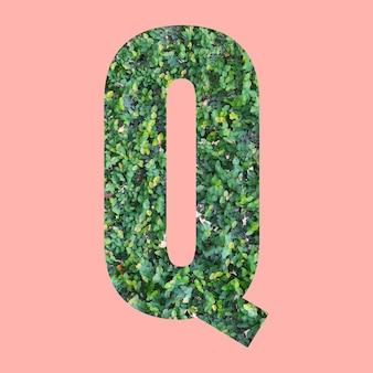 あなたの仕事のデザインのためのパステルピンクの背景に緑の葉のスタイルの形qのアルファベット文字。