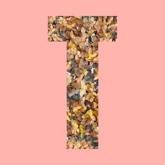 Alphabet letters of shape t in autumn style on pastel pink background for design in your work.