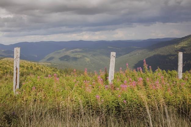 카르파티아 산맥의 고산 초원, 관광 및 레크리에이션을 위한 풍경, 루마니아-우크라이나 국경