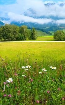 アルプスの山の牧草地の静かな夏の景色